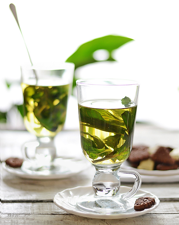Fresh Mint Tea – refreshing hot or cold drink to sooth your mood as ...